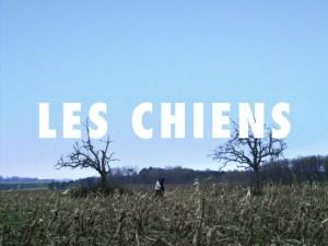 5_Les Chiens